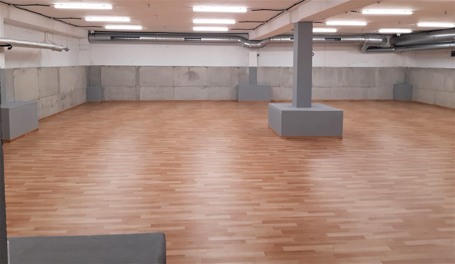 Vilniaus Baltupių progimnazijos rūsyje – moderni salė ne tik karatė aistruoliams